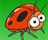 The Lady Bugs